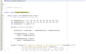 programacion en java: promedio de edad en vectores