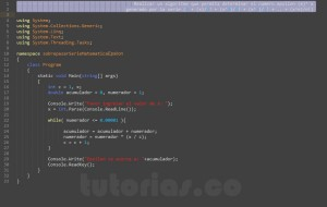 programacion en c#: serie matematica epsilon