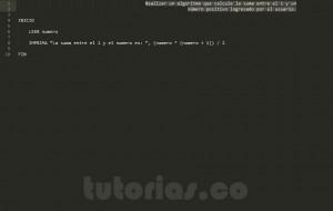 algoritmos: suma del 1 al n