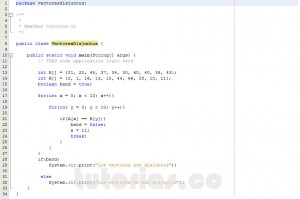 programacion en java: vectores disjuntos