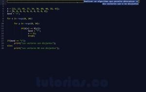 programacion en python: vectores disjuntos