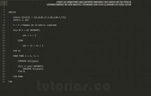 programacion en pseudocodigo: figura cruz