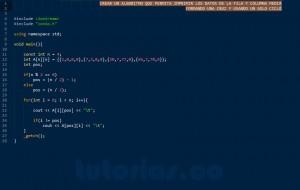 programacion en C++: imprimir datos matriz figura cruz