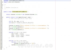 programacion en java: intercambiar filas de matriz