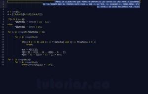 programacion en python: invertir matriz cuadrada