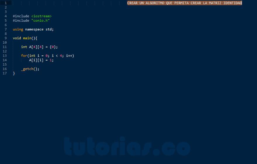 programacion en C++: crear matriz identidad