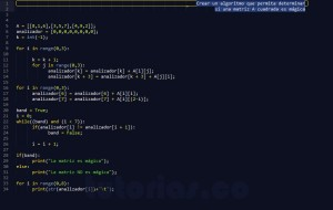 programacion en python: matriz magica