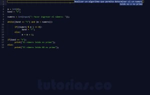 programacion en python: numero primo