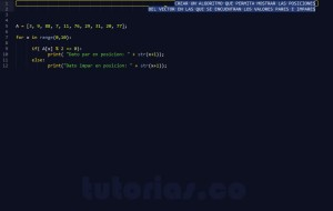 programacion en python: posiciones vector