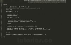 algoritmos: promedio filas y columnas de una matriz