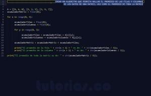 programacion en python: promedio filas columnas de una matriz