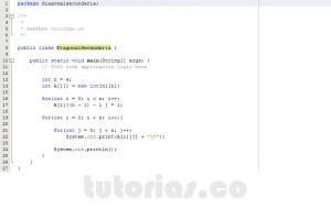 programacion en java: diagonal secundaria de una matriz