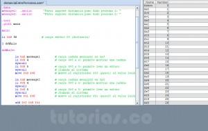 programacion assembly: distancia entre personas