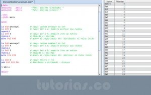 programacion assembly: division por restas sucesivas