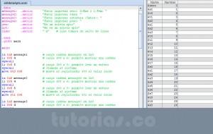 programacion assembly: el atleta apto