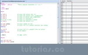 programacion assembly: sobrepasar serie matematica epsilon