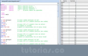 programacion assembly: tiempo al proximo segundo