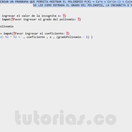 programacion en matLab: mostrar la representacion de un polinomio