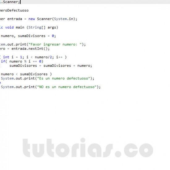 programacion en java: numero defectuoso
