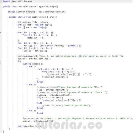 programacion en java: matriz dispersa diagonal principal