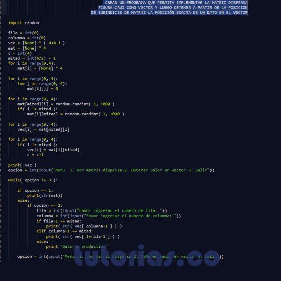 programacion en python: matriz dispersa figura cruz