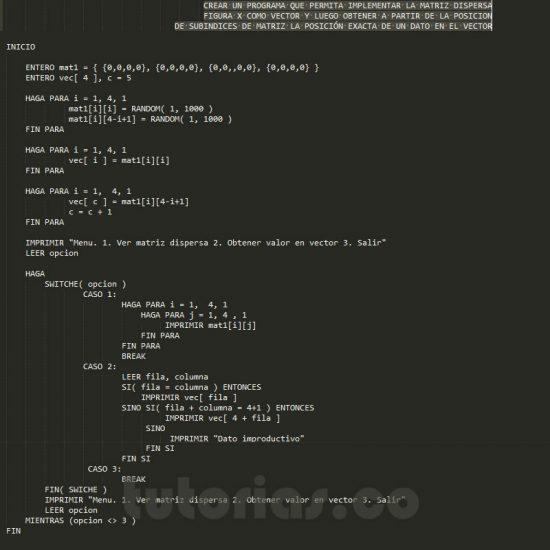 programacion en pseudocodigo: matriz dispersa figura x