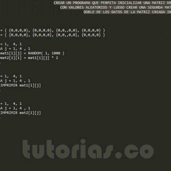 programacion en pseudocodigo: el doble de una matriz