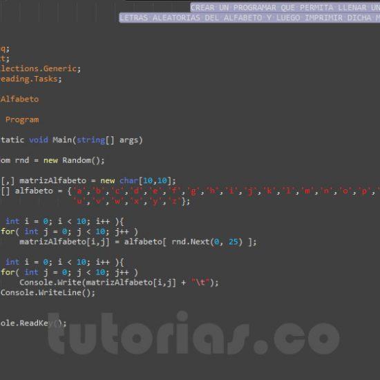 programacion en C#: matriz alfabeto