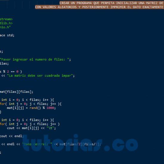 programacion en C++: imprimir dato central de una matriz