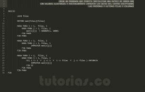 programacion en pseudocodigo: datos centrales de una matriz