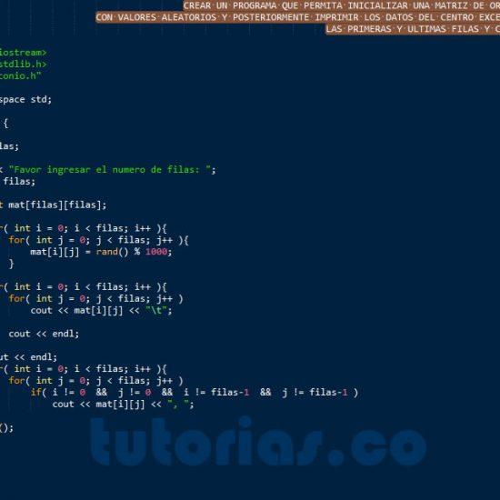 programacion en c++: datos centrales de una matriz